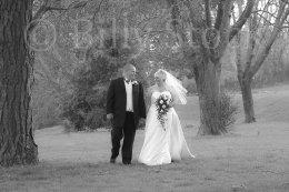 241 WEDDINGS