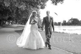290 Weddings