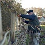 Baz of Burnham Willow weaving