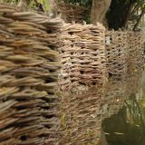 Burnham Willow Bank Erosion control Project on the River Wensum