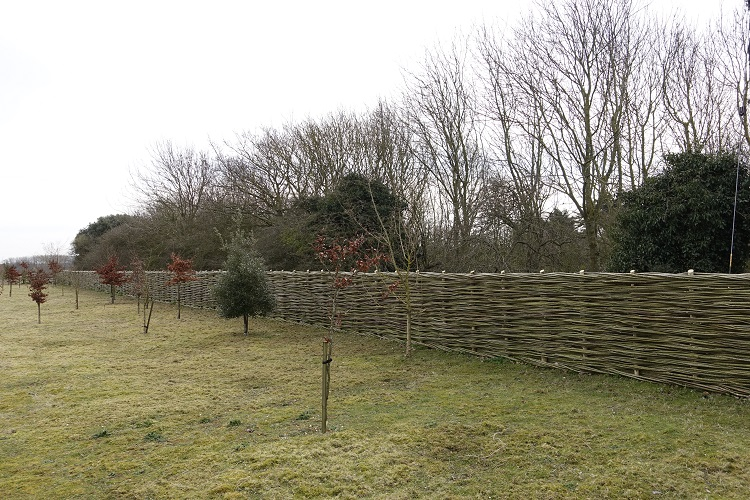 Burnham Willow  Fencing  Herrings Lane Burnham Market.