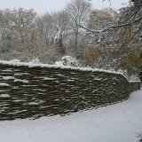 Burnham Willow  Fencing in the Snow .