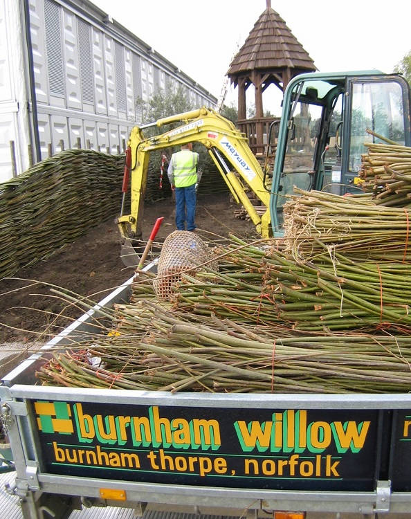 Burnham Willow at the RHS Chelsea Flower Show
