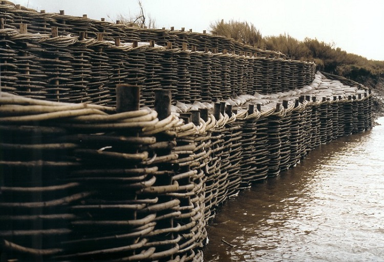 Burnham Willow Erosion Management at Overy Staithe