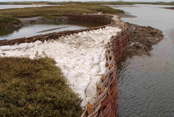 Erosion Control Structure by Burnham Willow