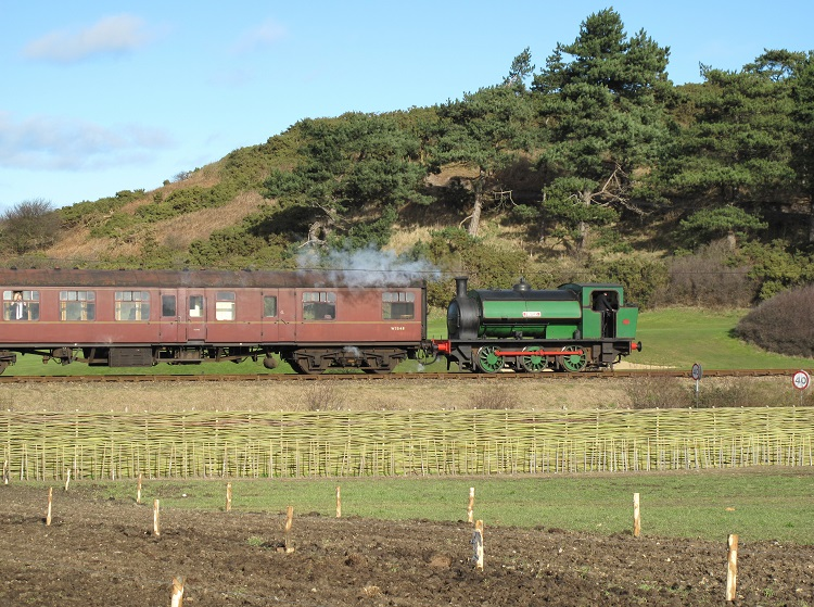 Steam Train and Burnham Willow and the Greenhouse Project Sherringham