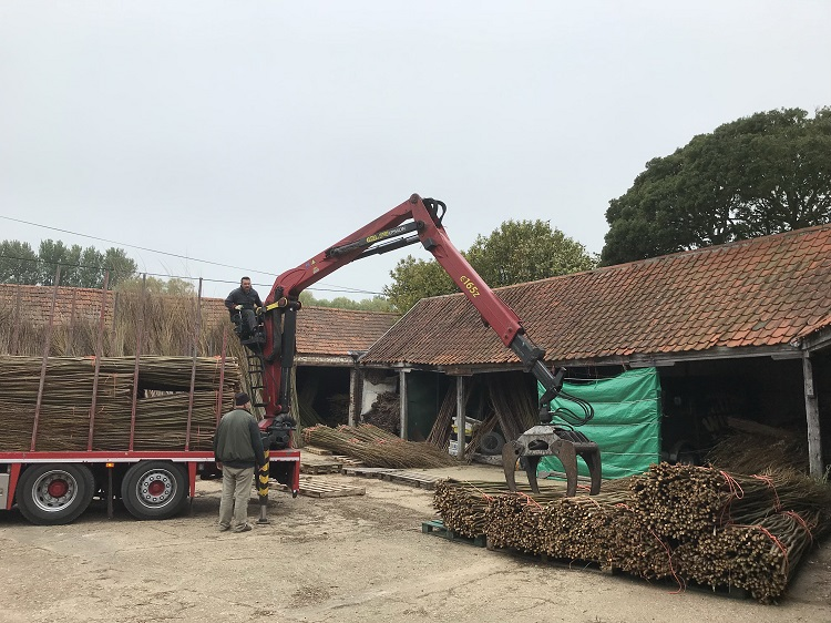 Willow delivery at Burnham Willows  Yard in Burnham Thorpe