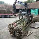 Willow delivery at Burnham Willow in the Yard at Burnham Thorpe