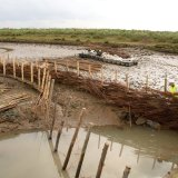 Burnham Willow Erosion Management at Burnham Overy Staithe