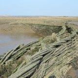 Burnham Willow Erosion Management Project. Burnham Overy Staithe