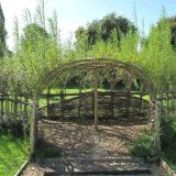 Living Willow Tunnel for Norwich City Council by Burnham Willow