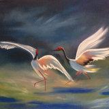 Dance of cranes