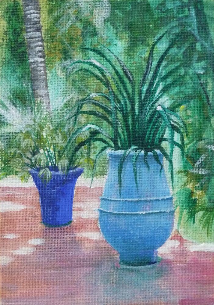 Majorelle Gardens partial shade. 13x18cm