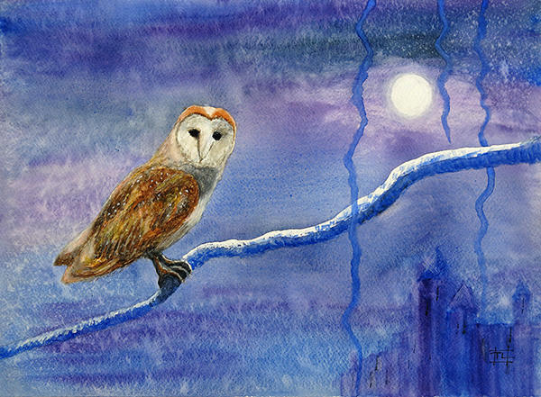 Owl by Moonlight