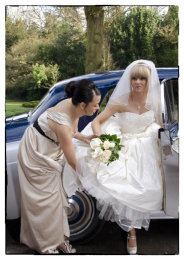 Wedding Sample (250)