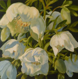 "hellebores acrylic on 3D canvas 20"" x 20"""