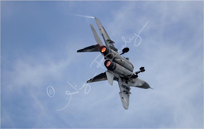 Polish Airforce Mig 29