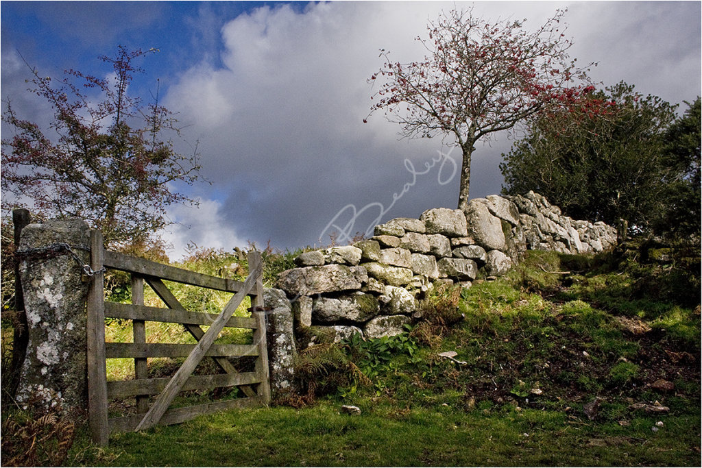 A gate to the moor