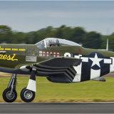 Mustang taking off