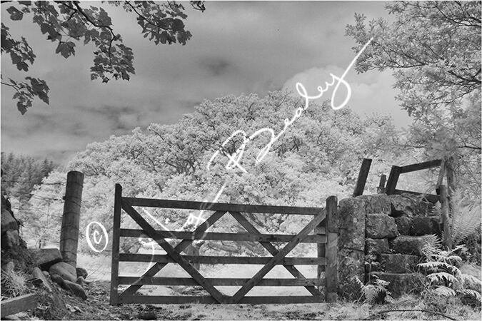Dartmoor Gate