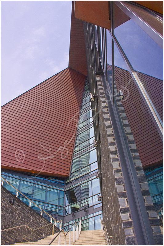 The Roland Levinsky Building.