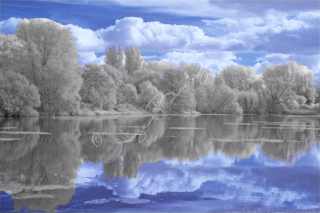 Rooksbury Mill Lake