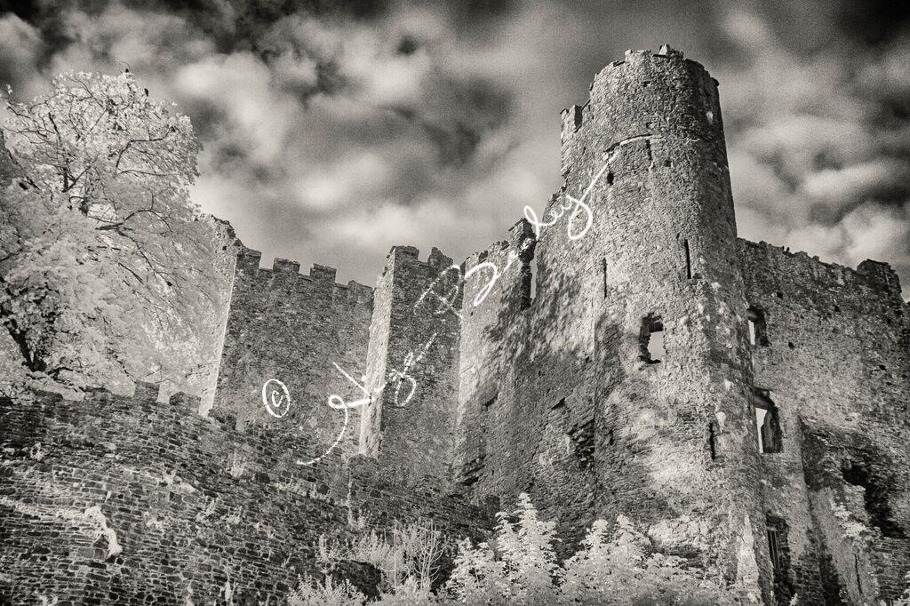Laugharne Castle 1