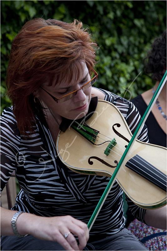 A Folk Violinist