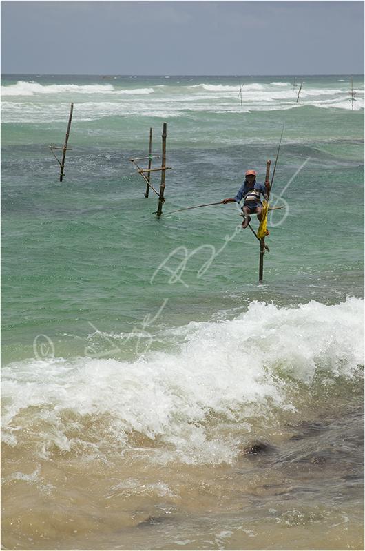 A Stilt Fisherman on the south coast