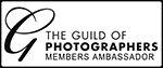 GuildLogo MembersAmbassador 150