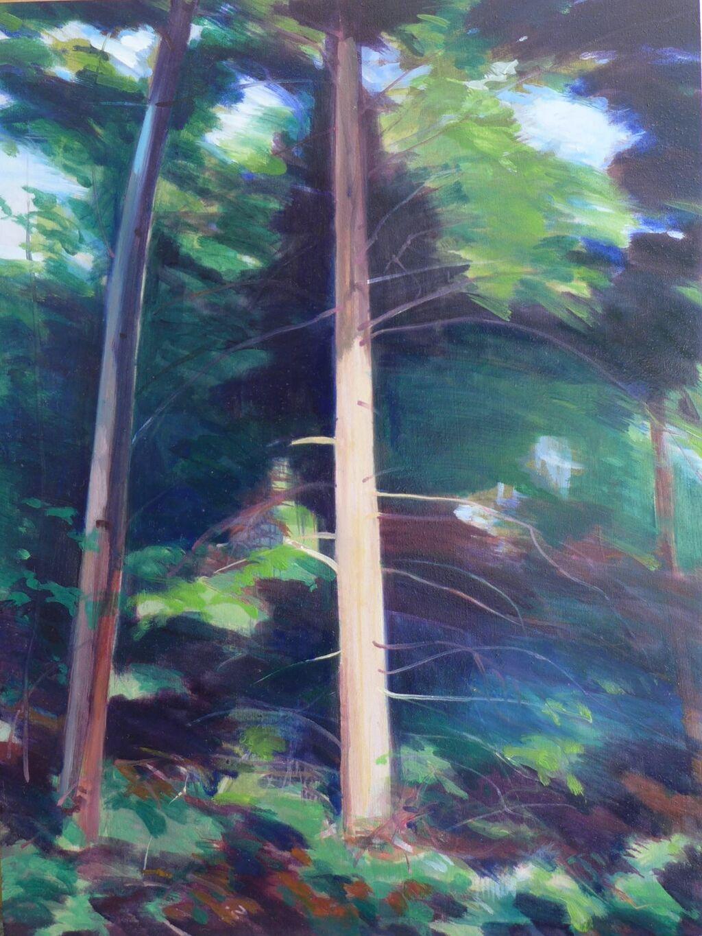 Forest Walk Study