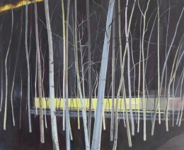 Nocturnal, Tate