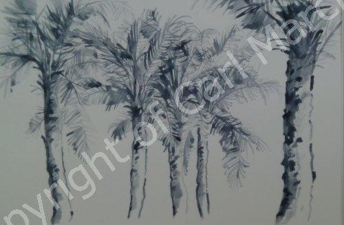 'Indigo palms'