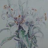 'Sara's Lilies'