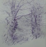 'Trees in the playing field'