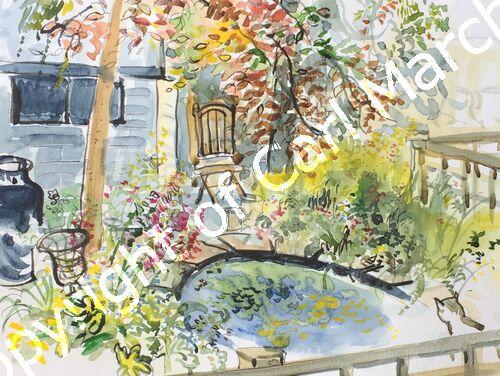'Summer garden with cat'