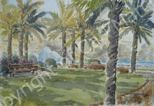 'Garden on the coastal walk'
