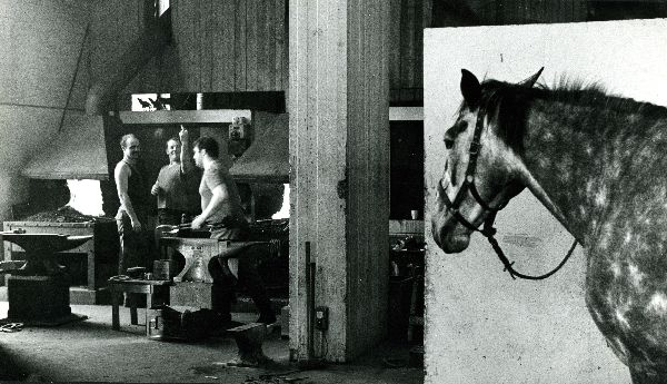 Household Cavalry Blacksmiths - London 1982