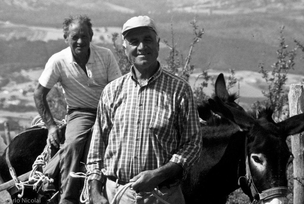 Farmers in Corleto Perticara, Basilicata, Italy 1993