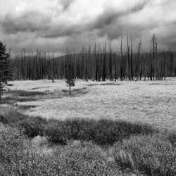 Wyoming-1948