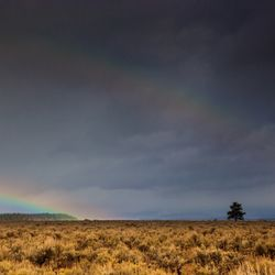 Wyoming-2495