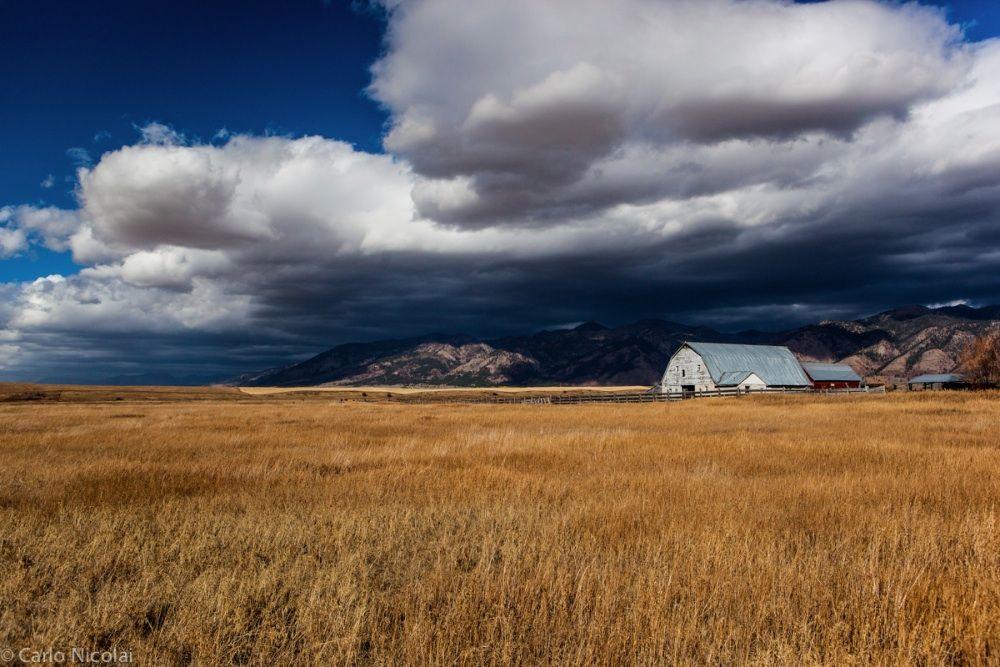 Idaho-2511