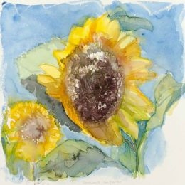 Windswept sunflower