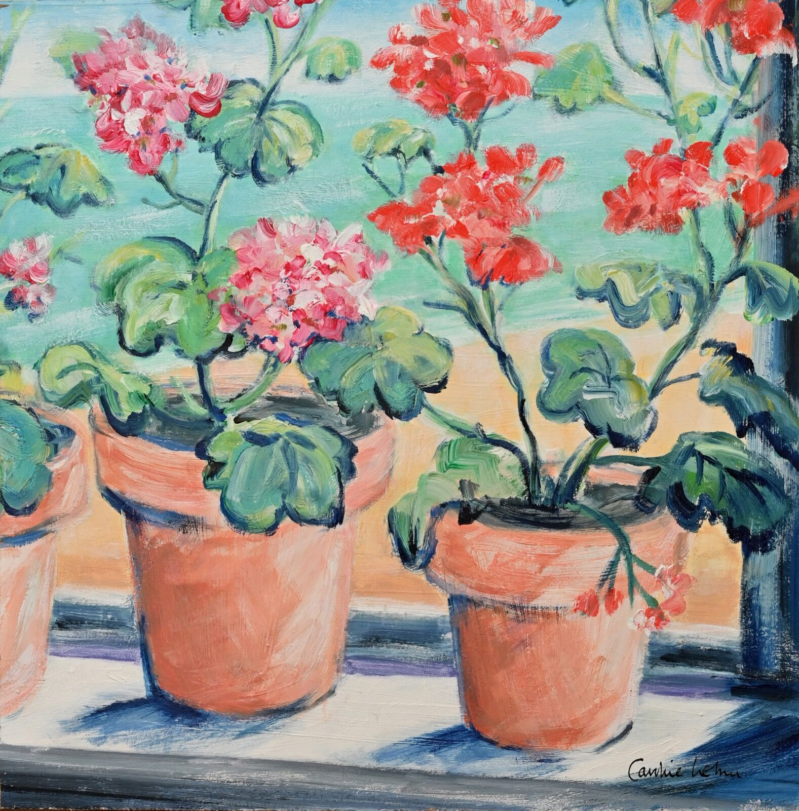 Kitchen Geraniums 40 x 40