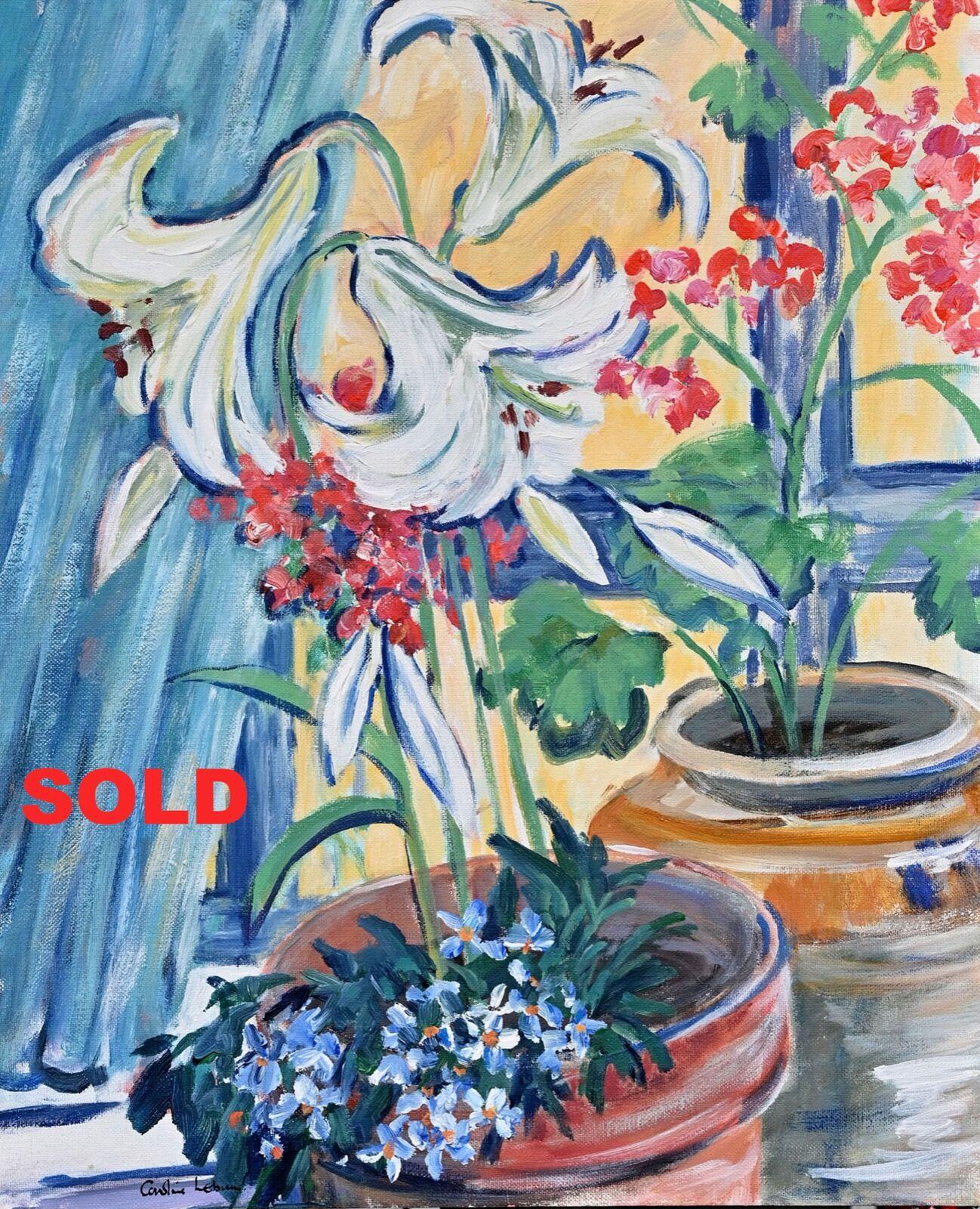 Lily Pot 50 x 40