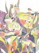 AUSTRALIAN FLOWERS (SOLD)