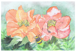 Bumble Bee A6 Card