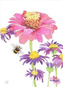 ZINNIA AND BUMBLE BEE