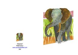 ELEPHANT A6 CARD