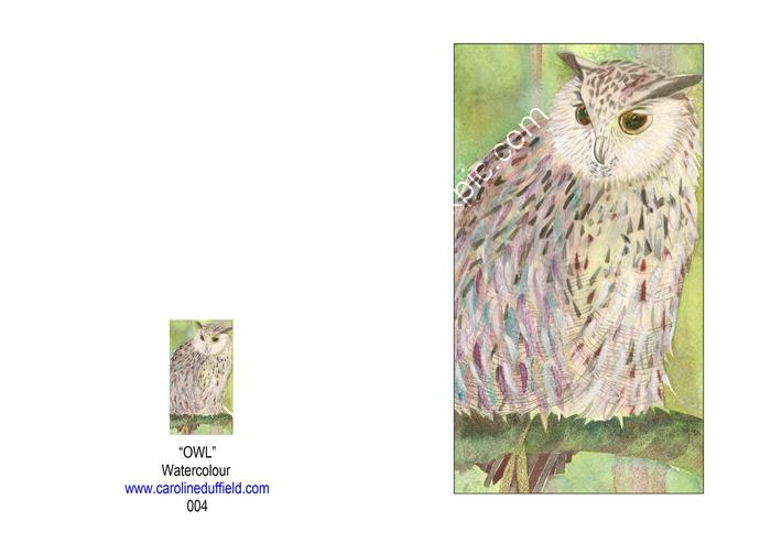OWL A6 CARD